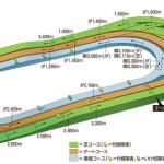 【東京3R】2/17(日)オススメの一頭