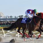 【GⅠ】フェブラリーステークス狙いの2頭【出走馬分析】