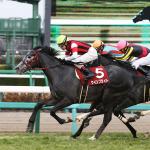 【GⅡ】中山記念が向く馬、向かない馬【出走馬分析】