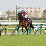 【2019大阪杯】阪神内回り2000m攻略の鍵とは【出走予定馬分析】
