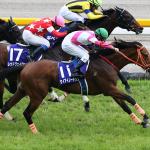 【2019NHKマイルカップ】3歳マイル王に輝くのはどの馬か【グランアレグリアが牡牝マイル統一か】